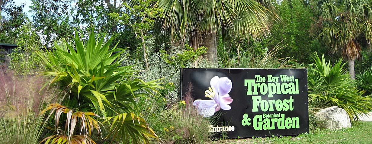 KW Botanical Garden & Tropical Forest, Stock Island